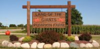 land of the giant pumpkins.jpg