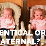 Identical or Fraternal? :: The Great Twin Debate