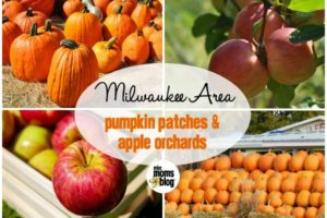 pumpkinfarmsappleorchards