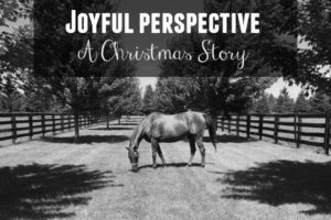 joyful-christmas-story