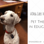 Therapy Dog Provides Calming Presence to Students