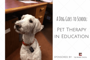 Pet Therapyin Schools