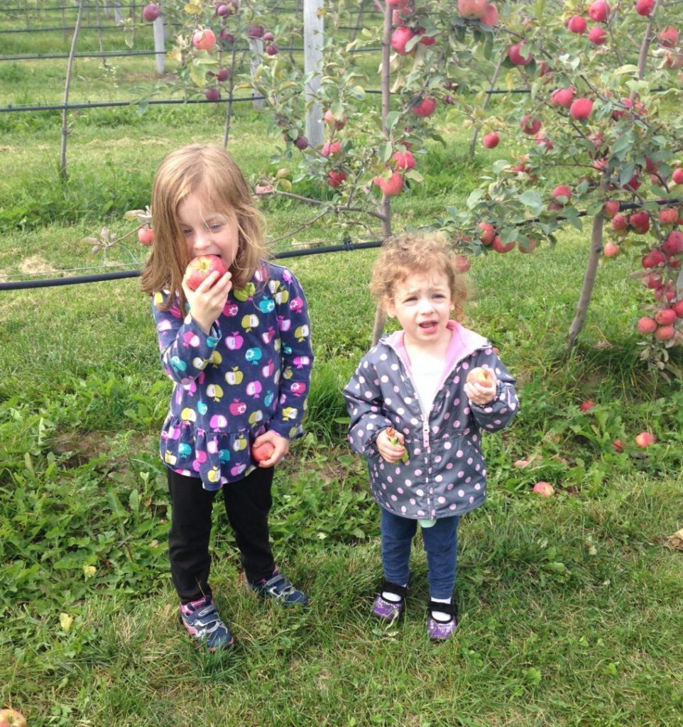 milwaukee apple orchards