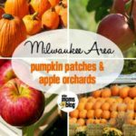 Milwaukee Area Pumpkin Patches and Apple Orchards