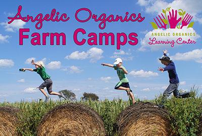 Farm Camp M&G Flyer copy
