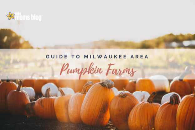 pumpkin farms