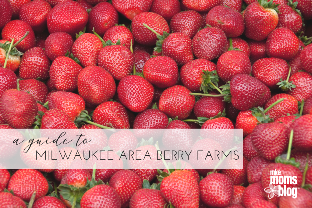 greater area Milwaukee berry picking