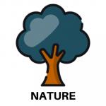 nature camp 2020